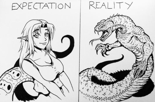 Expectation VS Reality by ArtDrudge
