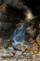 Mountain Stream Waterfall by Mfcox