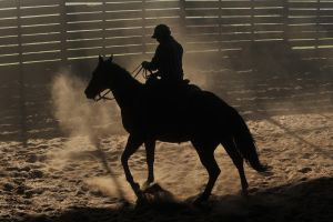 Cowboy and Pony Silhouette by JSF1