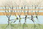 withered trees by federicocortese