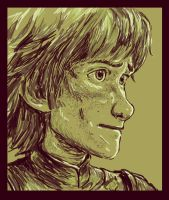Older!Hiccup - Colour pallete #11 by LenleG