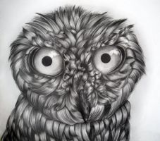 Owl Drawing (9th Grade) by icee-bleu
