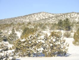 Arizona Snowscape 2 by SorrelBeauty