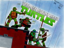 TMNT - Cover by RukaHimenoshi