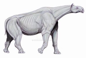 Indricotherium by DiBgd