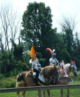 Jousting Stock by Amor-Fati-Stock