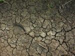 Mud Texture2 by crystal-stock