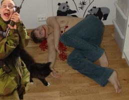 The cat was innocent by paillade