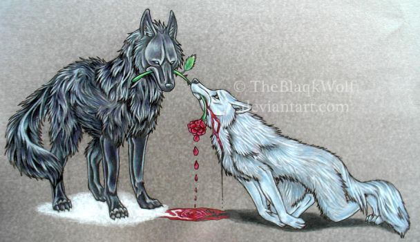 A Gift of Death by TheBlaqkWolf