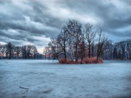 Frozen pond by FrantisekSpurny