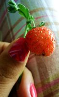 Fraise by Kitty-Amelie