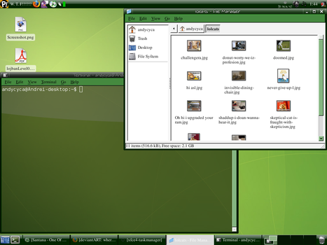 Green Desktop by andycyca