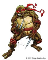 Raph pissed by UltimateRubberFool