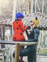Miraculous Ladybug and Chat Noir by Kiefer-Ramius