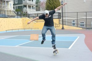 The Skateboarder Action Shot 8 by Miss-Tbones