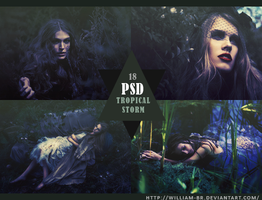 PSD 18 - Tropical Storm by William-BR