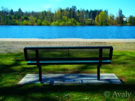 Esthetically Seated by Avaly