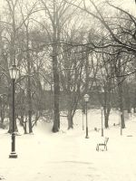 an old park in winter ( retro ) by snusmumrikenn