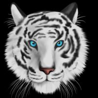 White Tiger by LadyFoxill