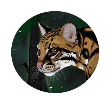 Ocelot by SirenAxelsen