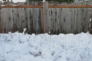 Background - snow and fence by ArtistStock