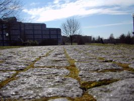 Trier: Campus Cobblestone by Aquarior