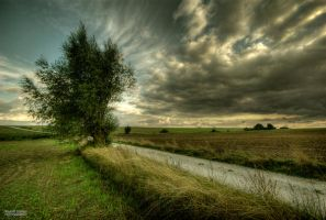 Field in the clouds by Inspektor02