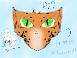 Lynxpaw Rp Tracker  by Theoddandstrange