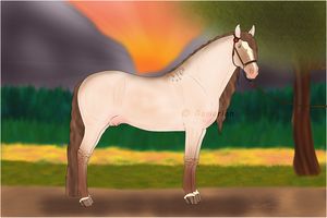 Andalusian Pride by Asmerion