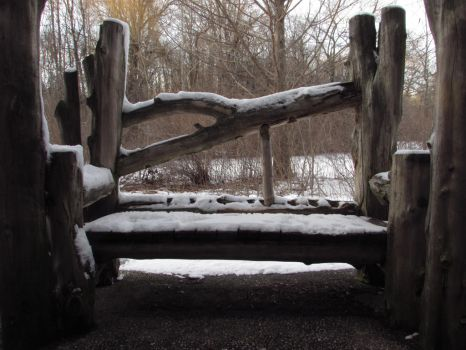 A snow covered bench by adenisej25