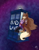 Spice and Bad Wolf by RizzleG