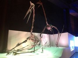 My time at the Houston museum part 9 by Joel-Cevallos