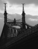 Liberty Bridge -Budapest- by NAkos