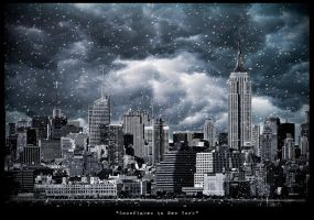 Snowflakes in New York by PortraitOfaLife