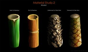 Material Study.2 [Woods.1] by SaxonSurokov