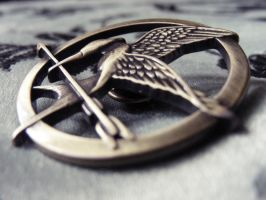 My Mockingjay by quick-witted