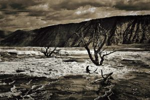 Mammoth Hot Springs by TheNonSequitur