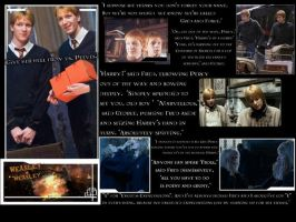 HP - Weasleys Wizard Wheezes by kyliesmiley16