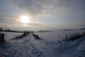 An Arctic England by Ellie-S
