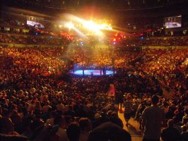 UFC 110 Crowd by Shame-On-The-Night