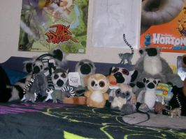 Lemur Collection- 4-15-08 pt1 by Lemurness
