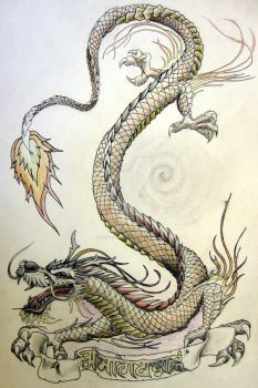 Dragon and scroll by knotty-inks