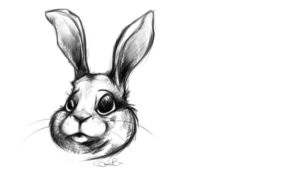 Rabbit Portrait by MilleB