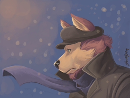 SOLID SNOW by solidasp