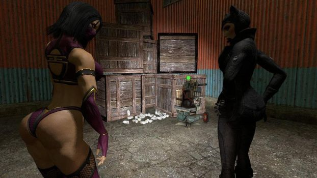 Mileena and catwoman 6 by rmack1205