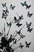 Free to Fly. by CHYUL-MiN