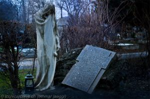 Zentralfriedhof at Vienna 1 by iconicarchive