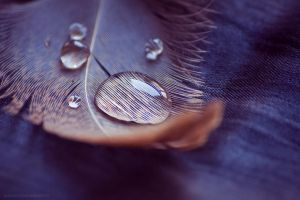 follow my tears VIII by JoannaRzeznikowska