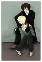 For the Worst, Drarry by Bippityboobityboobs