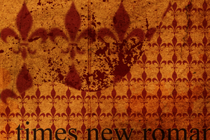 Times New Roman by eugenio1